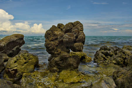 Malaysia. The East coast of the island of Borneo. Fossilized remains of ancient inhabitants of coral reefs on the tropical coast of the Pacific Ocean. Stock Photo