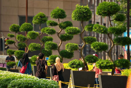 Kuala Lumpur. Malaysia. November 24, 2018. Numerous tourists walk among the decorative surreal trees in the park in front of the entrance to the Petronas Twin Towers. Sajtókép