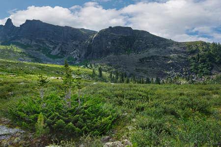 Russia. Southern Siberia, Krasnoyarsk territory. Summer in the natural mountain Park Ergaki.