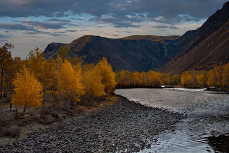 Russia. The South Of Western Siberia, The Altai Mountains. Golden autumn in the valley of the Chulyshman River near the Katu-Yaryk pass. Banque d'images