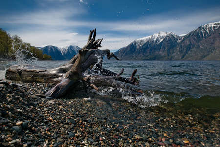 Russia. South Of Western Siberia, Mountain Altai. Cold waves on a colorful pebble in the area of the southern shore of Lake Teletskoye at the mouth of the Chulyshman River