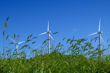 Wind turbine in a green field with blue sky