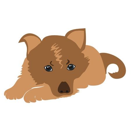 sad dog: Cute cartoon puppy lying illustration. Sad puppy . Pet Dog lying. Cartoon dog sad isolated. Illustration