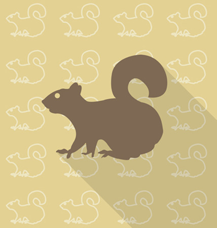 Squirrel sit vector Illustration