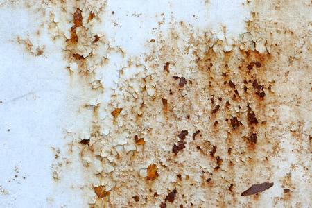 parasitic: Start parasitic rusting iron gates Stock Photo