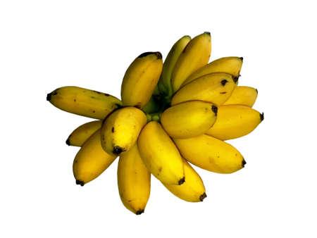 Pisang Mas or Golden Banana, Mini Size Stock Photo
