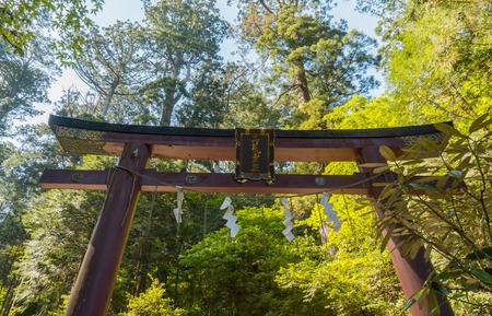 torri: Wooden Torri gate in a temple near a forest at Nikko Japan Stock Photo
