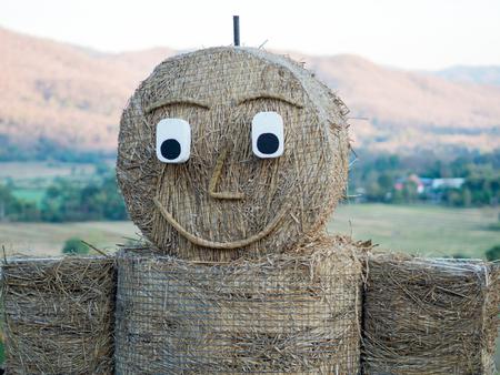 espantapajaros: Espantap�jaros, cara sonriente, hombre de paja Foto de archivo