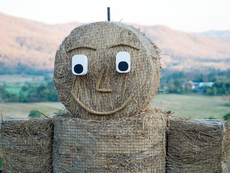 protection concept: Scarecrow, smiley face, strawman
