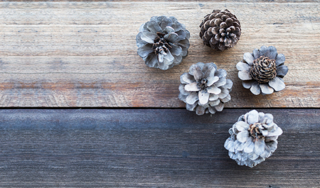 Vintage filtered, Pine flower on wood table, flat lay, nature and relax concept
