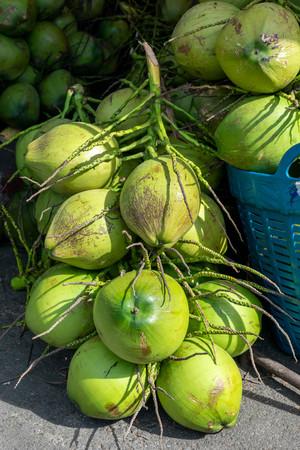 Fresh coconuts sold in the fruit market Standard-Bild
