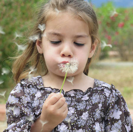 Little Girl Blowing a Dandelion with Flying Seeds  photo