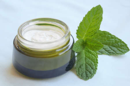 skincare: Cosmetic Cream and Mint Plant on Toned Background