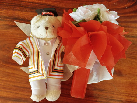 Teddy bear wearing gown with congratulation