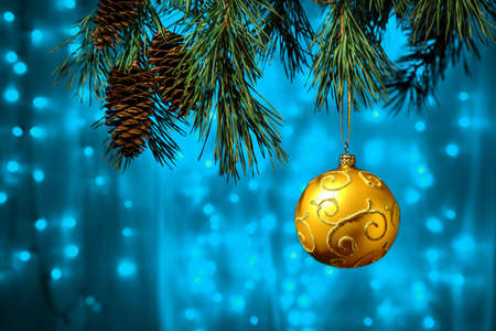 Shiny Christmas gold ball hanging on pine branches with festive blue