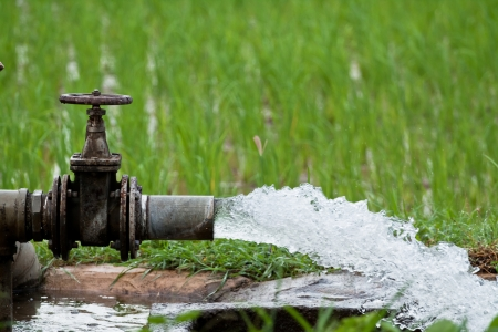 flowing: Water for agriculture