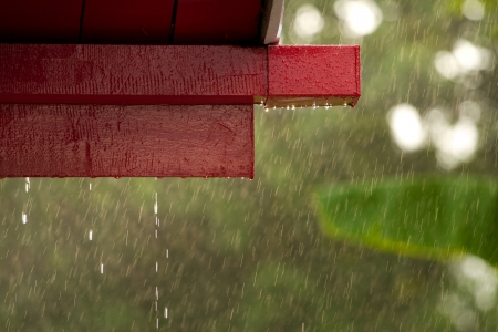 Rain and roof