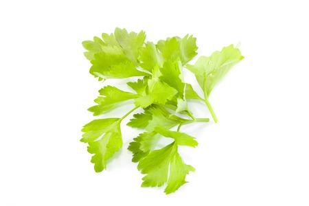 celeriac: Celery isolated on white background