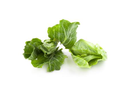 chinese broccoli on white background
