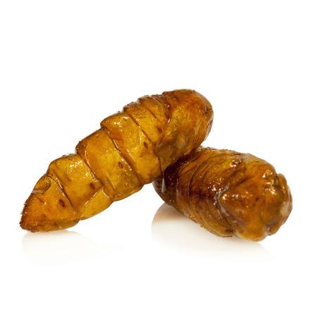 pupae: Silkworm pupae fries on white background Stock Photo