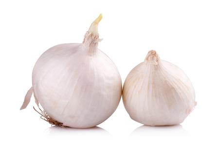 cebolla blanca: cebolla blanca aislada en el fondo blanco