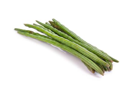 sonjna: moringa isolated on a white background