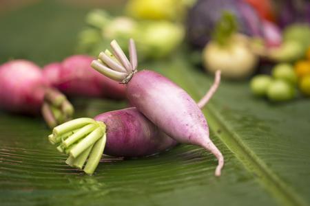 dikon: púrpura rábano daikon en la hoja del plátano