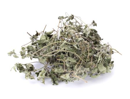 potherb: Dried oregano on white background.