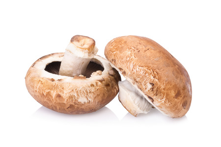 portobello mushrooms isolated on white background. Standard-Bild