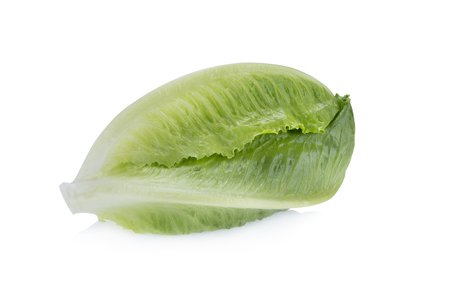 cos: Cos Lettuce Isolated on White Background. Stock Photo