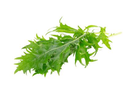 Mizuna greens op een witte achtergrond.