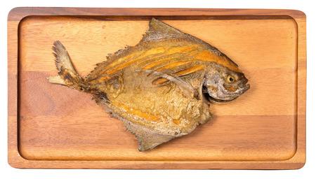 carnivorous fish: Pompano Fry. Stock Photo
