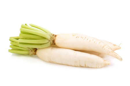 fresh white radish isolated on white background.