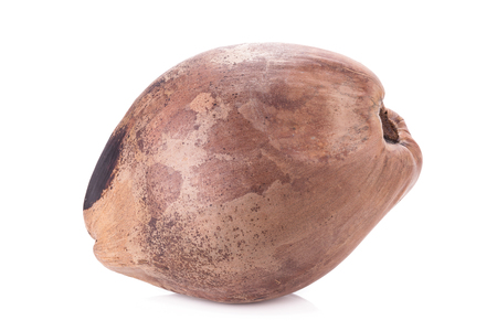 copra: Coconut isolated on white Background. Stock Photo