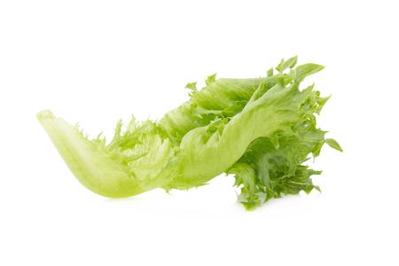 frilly: green frillies iceberg lettuce isolated on white background.