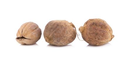 Gedroogde kruiden, Amomum krervanh Pierre, Siam kardemom, Best kardemom, Clustered kardemom, kamfer Seed, Zingiberaceae Stockfoto