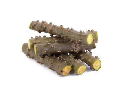 nourish: Crispa herb on white background. Stock Photo