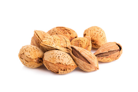 nut shell: Almond nut in shell and shelled isolated on white background.