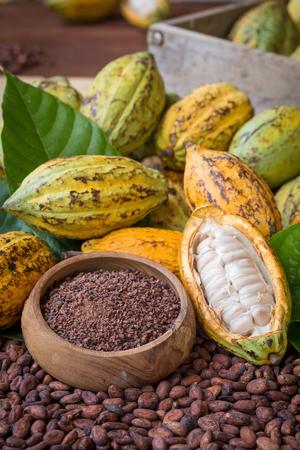 Rijpe cacao pod en nibs, cacao bonen setup achtergrond. Stockfoto