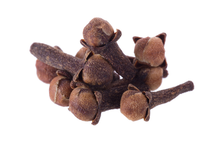 Clove spice closeup isolated on a white background. Stock Photo