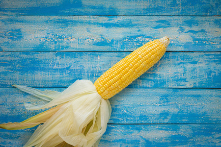 Ripe Corn on a blue wooden table top view.