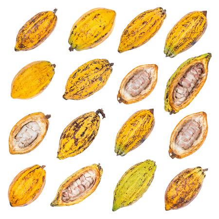 카 카오 열매, 원시 카카오 콩, 코코아 콩깍지 흰색 배경에 고립.