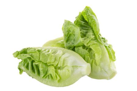 lechuga cos fresca verde aislado en el fondo blanco .