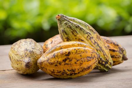 Rohe Kakaobohnen und Kakaofrucht auf einer Holzoberfläche.