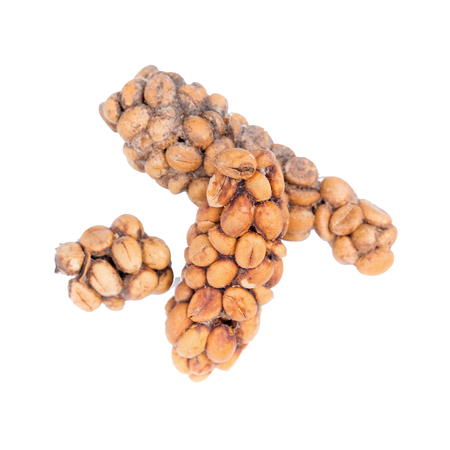 Kopi luwak or civet coffee, Coffee beans excreted by the civet isolated on white background.