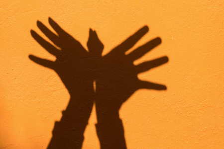 Shadow of hand symbol mean animal like a Bird on Orange wall background. 版權商用圖片
