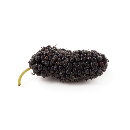 Mulberry fruit, Mulberry isolated on white background
