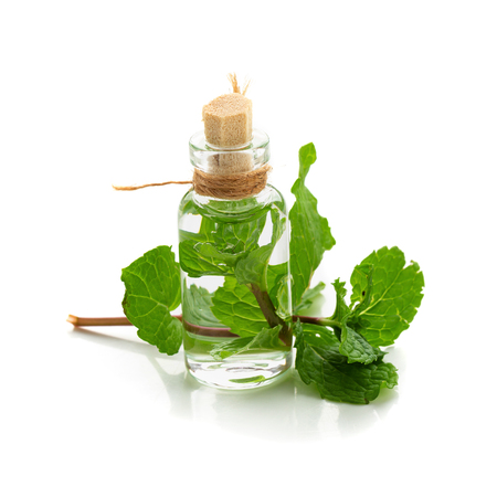 Essential oil made from mint isolated on a white background. Stock Photo