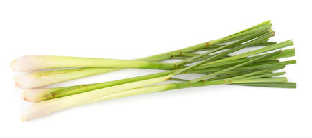 lemon grass isolated on a white background. Stock Photo
