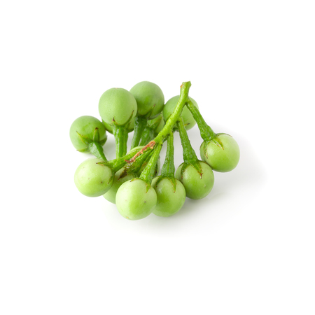 Pea Eggplants or turkey berry isolated on white background